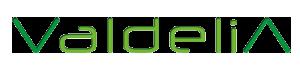 valdelia logo arr